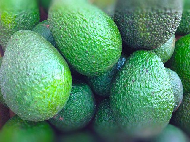 Foto_avocado_stuttgart_lieferdienst_regionale_spezialitaeten_biofirat_grossmarkt
