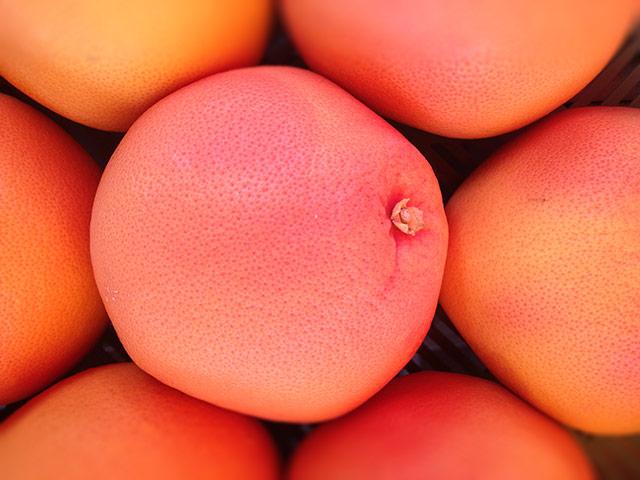 biofirat_international_grapefruit_demeter