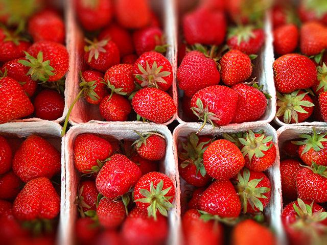 biofirat_regional_erdbeeren_demeter