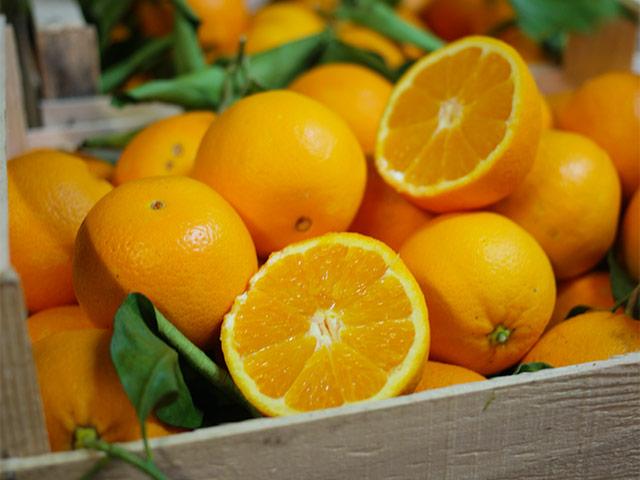 biofirat_stuttgart_demeter_orangen