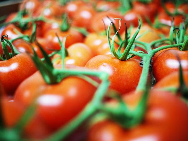 biofirat_tomaten_2_demter_frisch_stuttgart