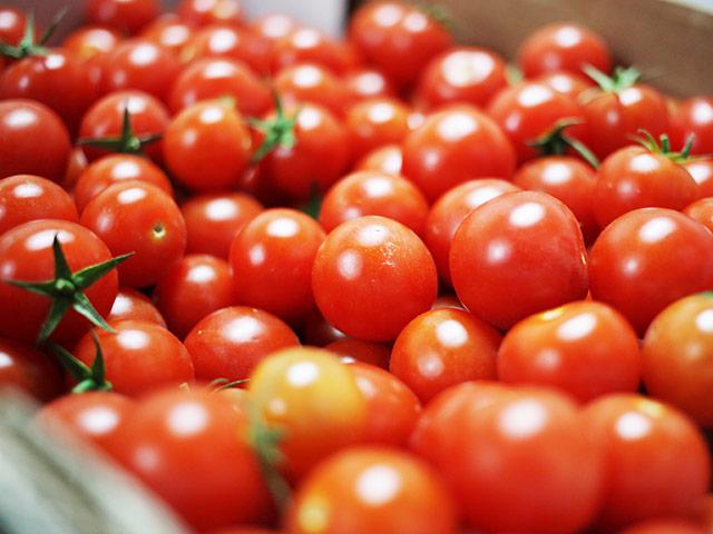 biofirat_tomaten_demter_frisch_stuttgart