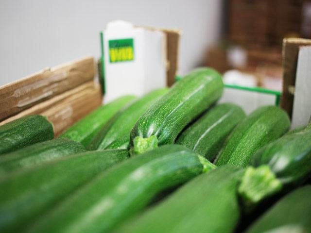 biofirat_zucchini